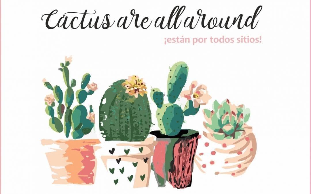 ¡Cactus por todos sitios!