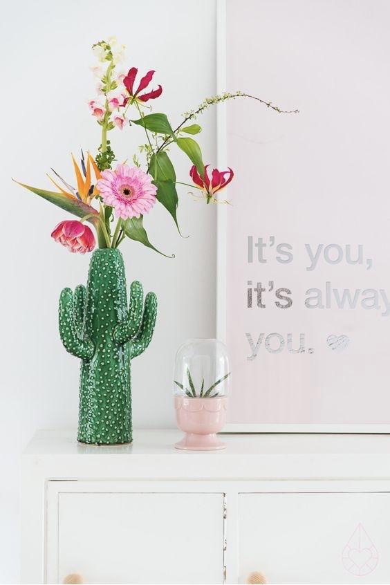 cactus-mesa
