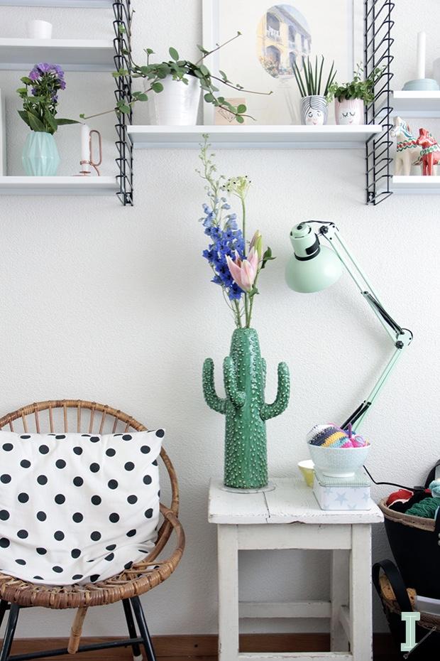 cactus-mesilla