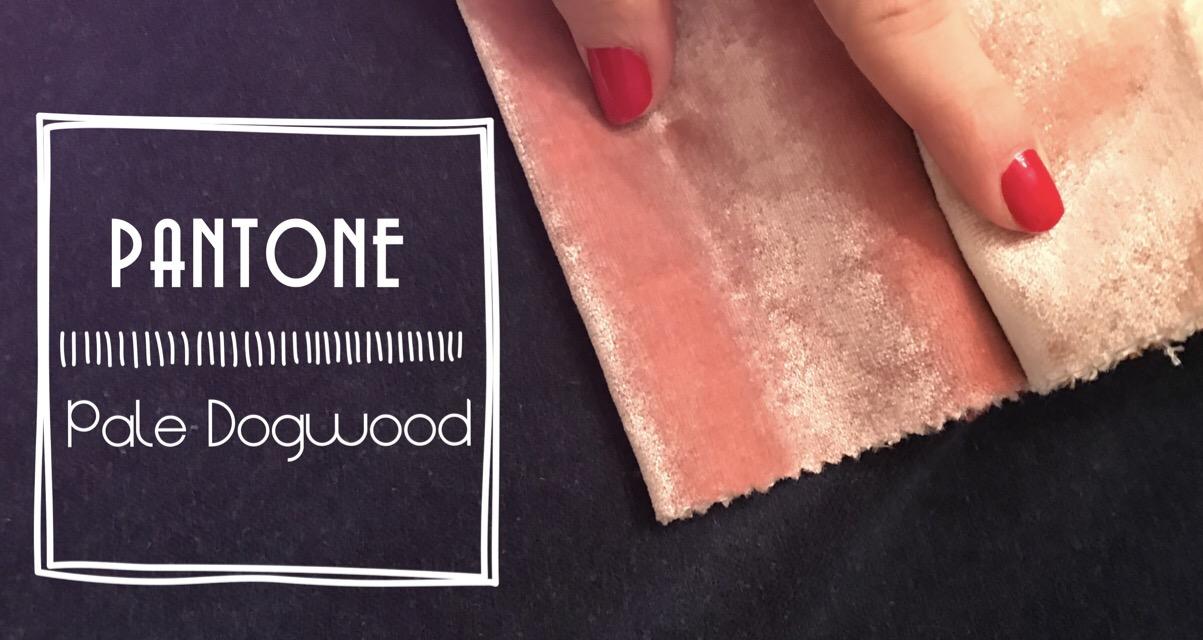 Pantone rose dogwood rosa palo