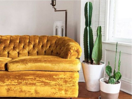 Decorating with … Yellow Mustard